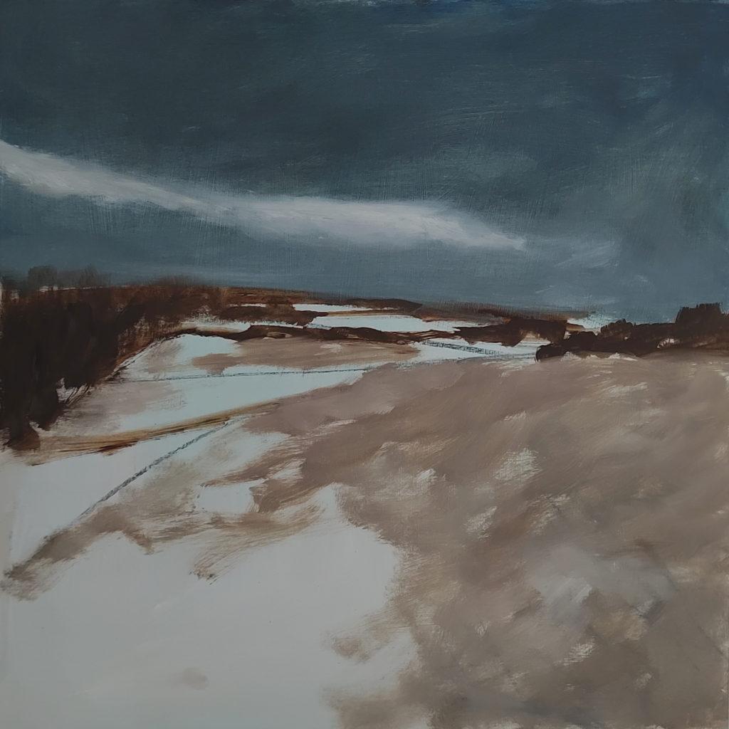 Newbold Commyn - winter Afternoon 2